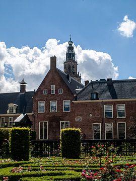 Prinsenhof van Martijn Wit