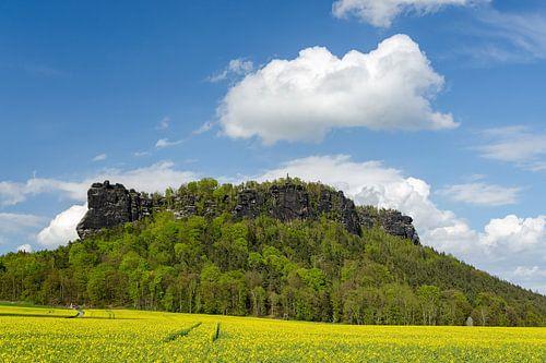 Lilienstein Saxon Switzerland in spring van Michael Valjak
