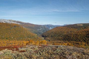 Der Herbst in den norwegischen Bergen von Mickéle Godderis