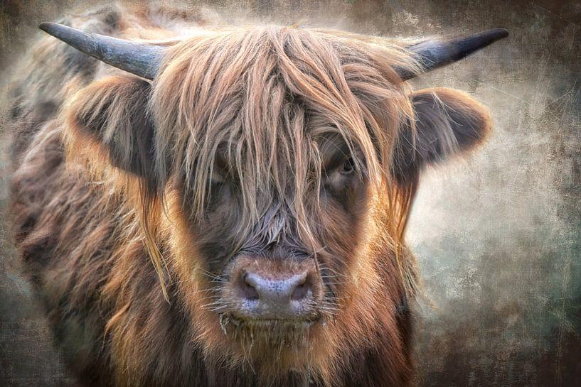 Ein kleiner Stier von Claudia Moeckel