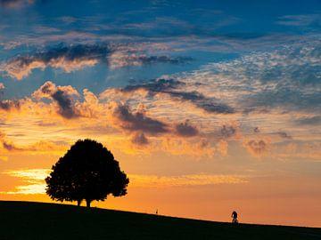 Sonnenaufgang mit Radfahrer