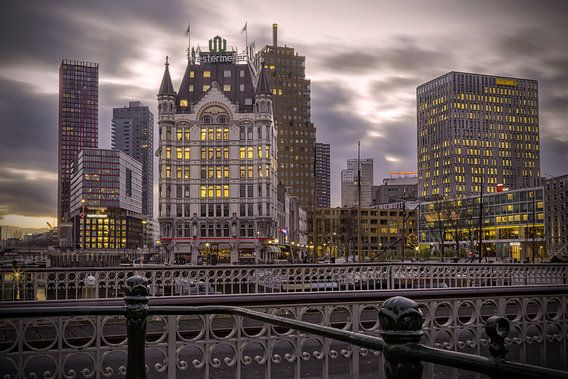 Het Witte Huis in Rotterdam van Miranda van Hulst