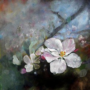 Appleblossom von Stephanie Köhl