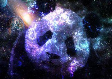 Galaxy Baby Panda van Lemo Boy
