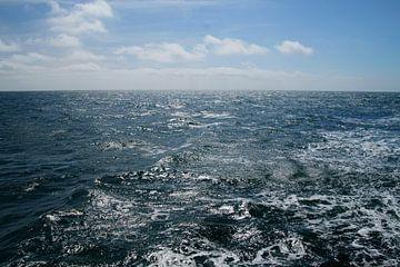 auf hoher See von wil spijker
