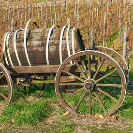 Automne dans le vignoble, vallée de l'Ahr sur Peter Eckert