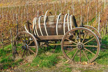 Automne dans le vignoble, vallée de l'Ahr