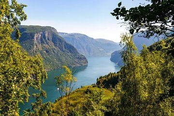 Uitzicht vanaf de hoge kliffen over het Aurlandsfjord in Noorwegen tijdens de zomer van Sjoerd van der Wal