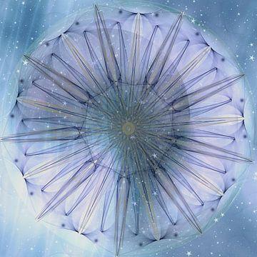 Mandala - Himmelsblume von Christine Nöhmeier