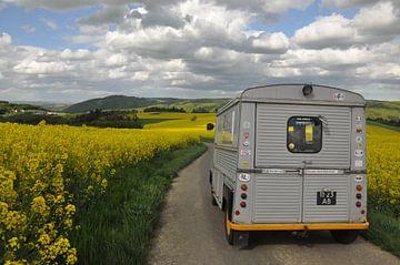 Citroën HY camper tussen de koolzaad velden von Theo Joosten