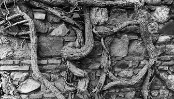 Muur in Malaga van Rob van Dam