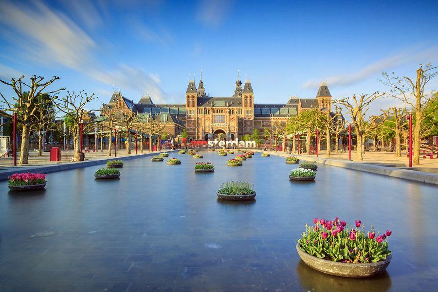 Tulpen voor het Rijksmuseum van Dennis van de Water
