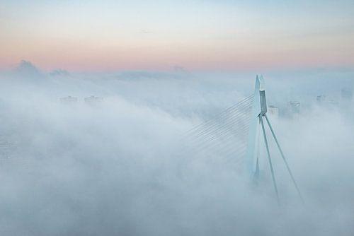 Erasmusbrug in de mist van