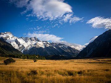 Typisch Neuseeland von Rik Pijnenburg