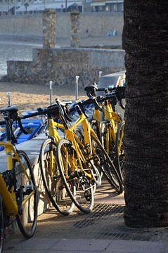 Fahrräder von