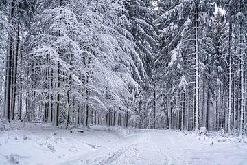 Diepe sneeuw van Uwe Ulrich Grün