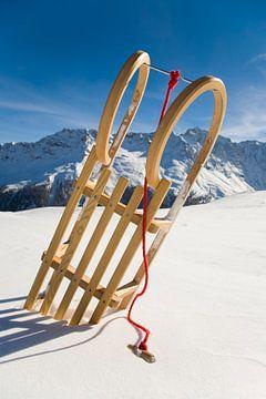 Rodeln in der Schweiz von Werner Dieterich