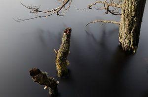 Stilte voor de storm op het meer van Joost Ligthart