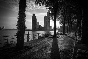 Sonnenaufgang in Rotterdam von Peter Hooijmeijer