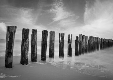 Wellenbrecher an der Küste von Zeeland Zoutelande in schwarz und weiß von Marjolein van Middelkoop