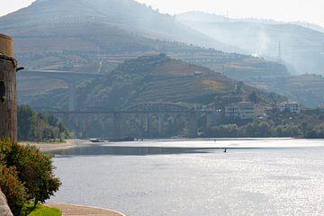 Portugal - Omgeving Porto - Brug over rivier de Douro van Marianne van der Zee