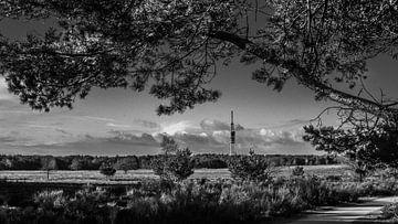 Bussumer Heide mit Fernsehturm von Frank Bakker