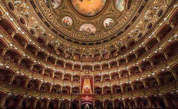 Theater Massimo Bellini sur Mario Calma