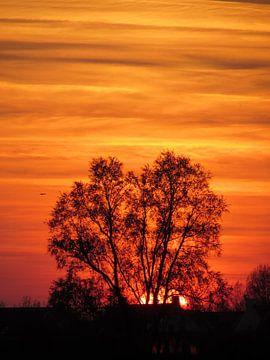 Zonsondergang op het platteland von Pieter Korstanje
