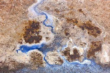 zeegeul bij moddergat van Martin Rijpstra