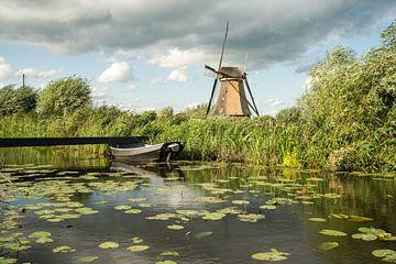 windmolens in Kinderdijk van Marcel Derweduwen