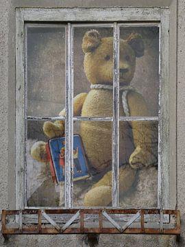 Window view - oud Teddy met spaarpot van Christine Nöhmeier