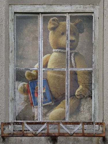 Window view - oud Teddy met spaarpot