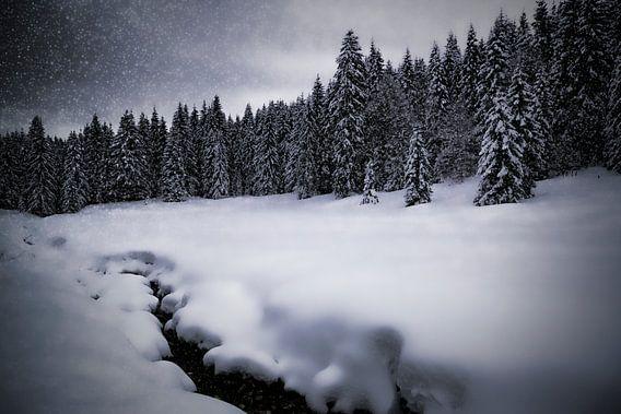 Bavarian Winter's Tale VII