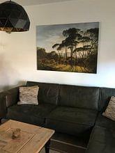 Kundenfoto: Italienische Landschaft mit Schirmpinien, Hendrik Voogd, auf leinwand
