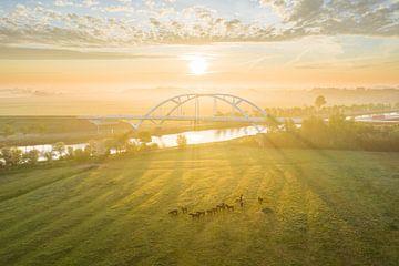 Walfridus-Brücke bei Sonnenaufgang von Droninger