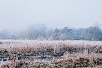Dromerig winter landschap dicht bij Ommen van Holly Klein Oonk
