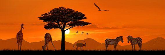 Romantische Africa in Panorama van Monika Jüngling