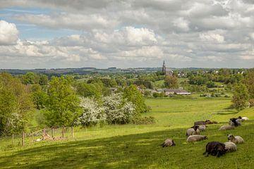 Panorama van Vijlen in Zuid-Limburg