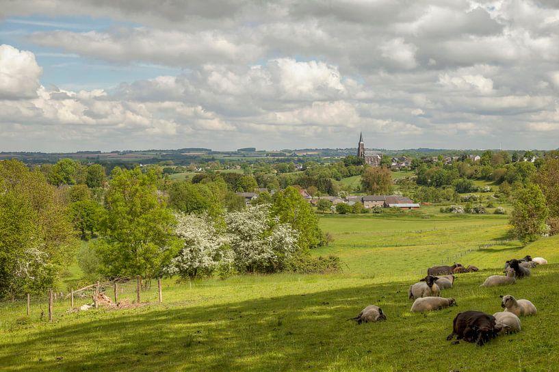 Panorama van Vijlen in Zuid-Limburg van John Kreukniet