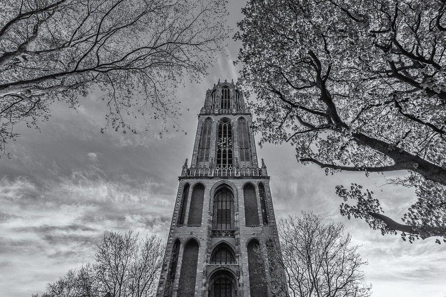 Domtoren Utrecht vanaf het Domplein op een zonnige dag - zwart-wit