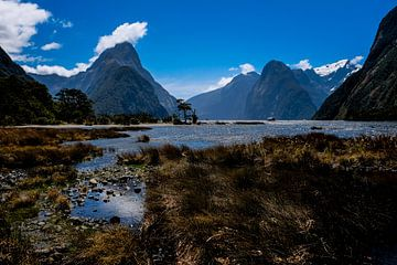Milford Sound Nieuw-Zeeland van Linda Bouritius