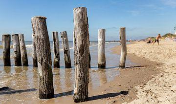 Strandpaaltjes op het strand 2 van Percy's fotografie