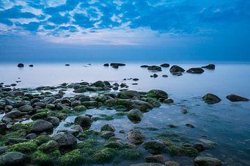 On shore of the Baltic Sea van