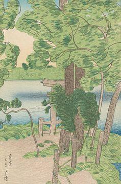 Windböen wehen durch frühsommerliche Vegetation, Kasamatsu Shiro