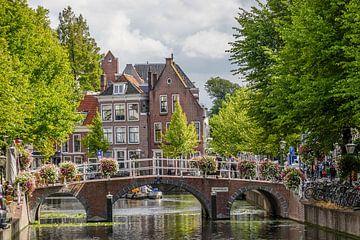 Rapenburg in Leiden van Dirk van Egmond