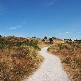 Dunes van Dana Marin