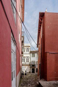Porto VI van