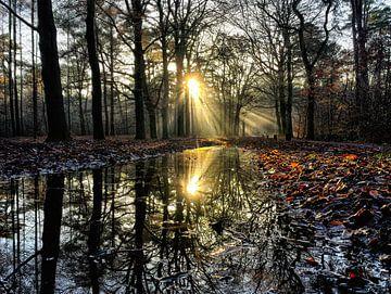 Prachtige reflectie van zonnestralen door een zonsondergang in de winter. van Mete Yildiz