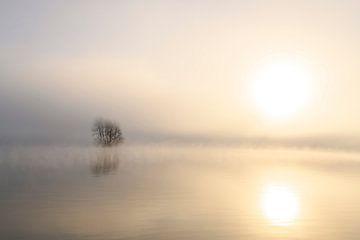 Nevel die opstijgt uit de IJssel tijdens een koude winterochtend van Sjoerd van der Wal