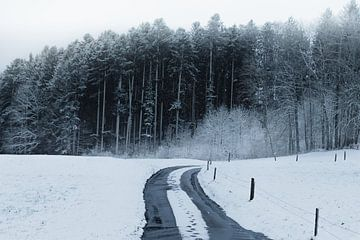 Fussabdrücke in einem ländlichen schneebedeckten Weg vor Wald von Besa Art